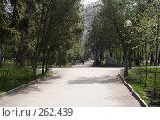 Купить «Городской парк липки в Саратове», фото № 262439, снято 23 апреля 2008 г. (c) Anna Kavchik / Фотобанк Лори