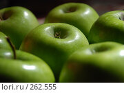 Купить «Яблоки», фото № 262555, снято 15 апреля 2008 г. (c) Нестерова Анна / Фотобанк Лори