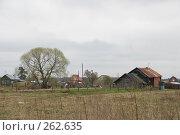Деревенский пейзаж. Стоковое фото, фотограф Елена Филиппова / Фотобанк Лори