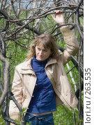 Купить «Девушка в ветвях», фото № 263535, снято 20 апреля 2008 г. (c) Арестов Андрей Павлович / Фотобанк Лори