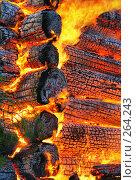 Купить «Пожар. Текстура горящего дерева. Фрагмент дома.», фото № 264243, снято 1 ноября 2007 г. (c) Татьяна Белова / Фотобанк Лори