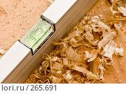 Купить «Уровень плотника», фото № 265691, снято 10 октября 2005 г. (c) Кравецкий Геннадий / Фотобанк Лори