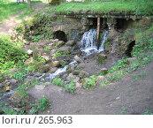 Купить «Мост через лесной ручей в Павловском парке», фото № 265963, снято 27 мая 2007 г. (c) Морковкин Терентий / Фотобанк Лори