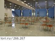 Купить «Кафе в коммерческом центре», фото № 266267, снято 24 февраля 2008 г. (c) Литова Наталья / Фотобанк Лори