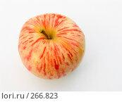 Купить «Красочное яблоко», фото № 266823, снято 12 августа 2006 г. (c) Анатолий Заводсков / Фотобанк Лори