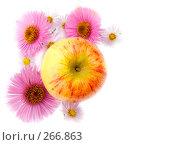 Купить «Осенний натюрморт из цветов и яблока», фото № 266863, снято 1 октября 2006 г. (c) Анатолий Заводсков / Фотобанк Лори