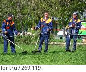 Купить «Стрижка газонов», эксклюзивное фото № 269119, снято 30 апреля 2008 г. (c) lana1501 / Фотобанк Лори