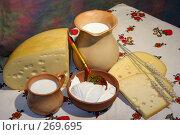 Купить «Натюрморт деревенский с молочными продуктами», фото № 269695, снято 11 декабря 2005 г. (c) Татьяна Белова / Фотобанк Лори