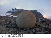 Круглые камни острова Чамп (Земля Франца-Иосифа) Стоковое фото, фотограф Ярослав Никитин / Фотобанк Лори