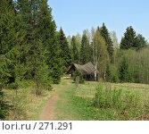 Купить «Тропинка в сказку», фото № 271291, снято 2 мая 2008 г. (c) Игорь Паршин / Фотобанк Лори