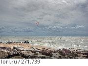 Купить «Морской берег», фото № 271739, снято 18 августа 2007 г. (c) Катыкин Сергей / Фотобанк Лори