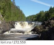 Купить «Водопад Кивач», фото № 272559, снято 17 июня 2006 г. (c) Елена Александрова / Фотобанк Лори