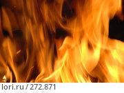 Купить «Огонь», фото № 272871, снято 1 мая 2008 г. (c) Смыгина Татьяна / Фотобанк Лори