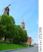 Москва. Кремль (2008 год). Стоковое фото, фотограф lana1501 / Фотобанк Лори