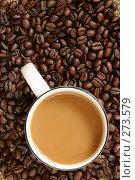 Купить «Кофе с молоком», фото № 273579, снято 29 апреля 2006 г. (c) Роман Сигаев / Фотобанк Лори