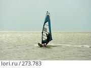Виндсерфер фристаил, фото № 273783, снято 4 мая 2008 г. (c) Сергей Литвиненко / Фотобанк Лори