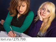 Купить «Девочки делают домашнюю работу», фото № 275799, снято 4 января 2007 г. (c) Михаил Лавренов / Фотобанк Лори