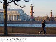 Купить «На набережной Невы. Санкт-Петербург», эксклюзивное фото № 276423, снято 5 ноября 2007 г. (c) Александр Алексеев / Фотобанк Лори