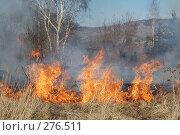 Купить «Горит сухая трава», фото № 276511, снято 7 мая 2008 г. (c) Григорий Погребняк / Фотобанк Лори