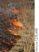 Купить «Горит сухая трава», фото № 276699, снято 7 мая 2008 г. (c) Григорий Погребняк / Фотобанк Лори