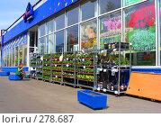 Купить «Торговля цветами на улице около цветочного магазина», эксклюзивное фото № 278687, снято 1 мая 2008 г. (c) lana1501 / Фотобанк Лори