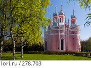 Купить «Чесменская церковь. Санкт-Петербург», эксклюзивное фото № 278703, снято 13 мая 2007 г. (c) Александр Алексеев / Фотобанк Лори
