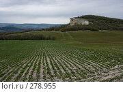 Купить «Борозды», фото № 278955, снято 2 мая 2007 г. (c) Андрей Пашкевич / Фотобанк Лори