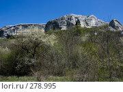 Купить «Скалы около Эски-Кермена», фото № 278995, снято 3 мая 2007 г. (c) Андрей Пашкевич / Фотобанк Лори