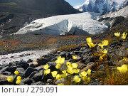 Купить «Ледник Маашей. Горный Алтай.», фото № 279091, снято 13 июля 2006 г. (c) Селигеев Андрей Иванович / Фотобанк Лори