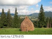 Купить «Горный луг летом», фото № 279615, снято 2 сентября 2007 г. (c) Юрий Брыкайло / Фотобанк Лори