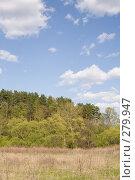Купить «Опушка смешанного леса весной», фото № 279947, снято 27 апреля 2008 г. (c) Вячеслав Потапов / Фотобанк Лори