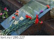 Купить «Красные гвоздики на памятной плите города-героя Сталинграда», фото № 280227, снято 9 мая 2008 г. (c) Федор Королевский / Фотобанк Лори