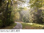 Купить «Бавария, город Бад Райхенхаль. Городской парк.», фото № 281491, снято 19 октября 2005 г. (c) Павел Гаврилов / Фотобанк Лори