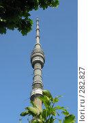 Купить «Останкинская башня на фоне неба», эксклюзивное фото № 282827, снято 12 мая 2008 г. (c) Виктор Тараканов / Фотобанк Лори