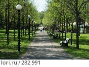 Парк Кадриорг. Таллин (2008 год). Стоковое фото, фотограф Игорь Соколов / Фотобанк Лори