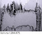 Купить «Морозное окно», фото № 284875, снято 2 декабря 2007 г. (c) Дмитриев Сергей / Фотобанк Лори
