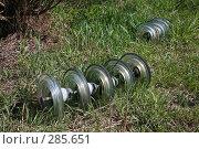 Купить «Изоляторы в траве», фото № 285651, снято 8 мая 2008 г. (c) Игорь Веснинов / Фотобанк Лори