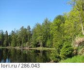 Купить «Озеро на о.Валаам», фото № 286043, снято 10 июня 2006 г. (c) Безрукова Ирина / Фотобанк Лори