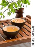 Купить «Китайская чайная церемония», фото № 286223, снято 22 апреля 2008 г. (c) Татьяна Белова / Фотобанк Лори