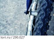Купить «Велосипедное колесо», фото № 290027, снято 17 мая 2008 г. (c) Юрий Гник / Фотобанк Лори