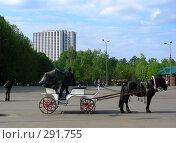Купить «Повозка с лошадью», эксклюзивное фото № 291755, снято 10 мая 2008 г. (c) lana1501 / Фотобанк Лори