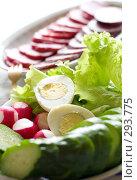 Купить «Овощи и колбаса», фото № 293775, снято 9 мая 2008 г. (c) Угоренков Александр / Фотобанк Лори
