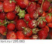 Купить «Клубника», фото № 295083, снято 18 июня 2007 г. (c) Примак Полина / Фотобанк Лори