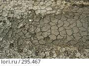 Купить «Засуха», фото № 295467, снято 3 апреля 2008 г. (c) Максим Камалов / Фотобанк Лори