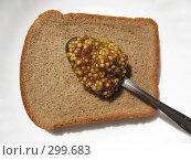 Купить «Ломоть ржаного хлеба с ложкой зерновой горчицы на белом фоне», фото № 299683, снято 24 мая 2008 г. (c) Заноза-Ру / Фотобанк Лори