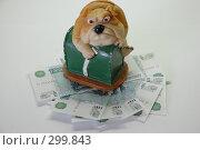 Купить «Надежная охрана. Игрушечная собака и деньги.», фото № 299843, снято 26 мая 2008 г. (c) Татьяна Дигурян / Фотобанк Лори
