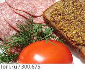 Купить «Помидор, колбаса-сервелат, веточка укропа и ржаной хлеб с горчицей», фото № 300675, снято 24 мая 2008 г. (c) Заноза-Ру / Фотобанк Лори
