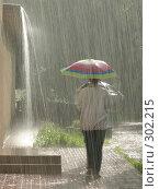 Купить «Солнечный дождь», эксклюзивное фото № 302215, снято 21 июня 2003 г. (c) Дмитрий Неумоин / Фотобанк Лори