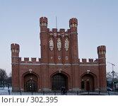 Купить «Королевские ворота. Калининград», фото № 302395, снято 2 января 2008 г. (c) Liseykina / Фотобанк Лори