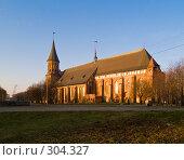 Купить «Кафедральный собор. Калининград», фото № 304327, снято 30 декабря 2007 г. (c) Liseykina / Фотобанк Лори